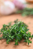 Fresh Thyme Royalty Free Stock Photography