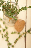 Fresh thyme on a glass jar Royalty Free Stock Image