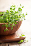 Fresh thyme herb in wooden bowl Royalty Free Stock Image