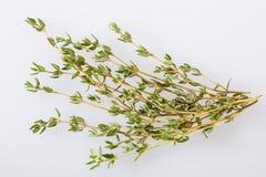 Fresh thyme Royalty Free Stock Photos