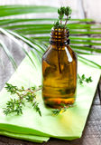 Fresh thyme oil Royalty Free Stock Images