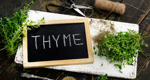 Fresh Thyme on old white wooden board. Royalty Free Stock Images