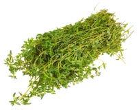 Fresh thyme Stock Image
