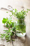 Fresh thyme and rosemary herbs in glass Royalty Free Stock Photos