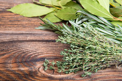Fresh thyme, rosemary and laurel bay leaves Royalty Free Stock Photo