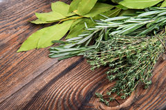 Fresh thyme, rosemary and laurel bay leaves Royalty Free Stock Image