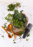 Fresh thyme and sage in mortar over white wooden background Stock Images