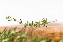 Fresh thyme scenery 2. Fresh thyme branch in a cooking scenery stock photos