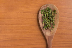 Fresh Thyme into a spoon Royalty Free Stock Image