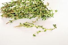 Fresh thyme sprigs on white Stock Image