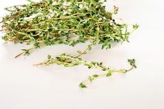 Fresh thyme sprigs on white Stock Image