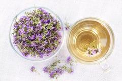 Fresh thyme tea Stock Image