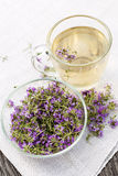 Fresh thyme tea Stock Photo