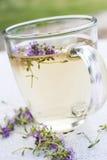 Fresh thyme tea Stock Photos