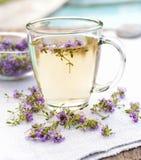 Fresh thyme tea Stock Images