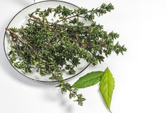 Fresh thyme and two bay leafs Royalty Free Stock Photography