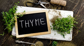 Fresh Thyme on white wooden board. Stock Photo