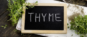 Fresh Thyme on white wooden board. View from above Royalty Free Stock Photo