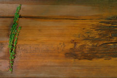 Fresh thyme  on wooden background Stock Image