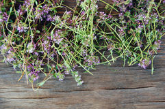 Fresh thyme on wooden table Royalty Free Stock Images