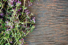 Fresh thyme on wooden table Stock Photos