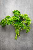 Fresh tied parsley on gray surface. Royalty Free Stock Photos