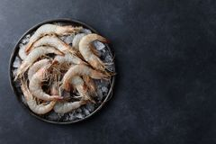 Free Fresh Tiger Prawns In A Plate With Ice Stock Image - 136704011