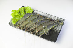 Fresh tiger shrimp with lettuce on black plate on white backgrou Royalty Free Stock Photography