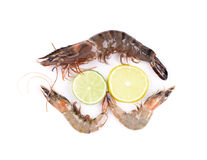 Fresh tiger shrimp with lime Royalty Free Stock Photography