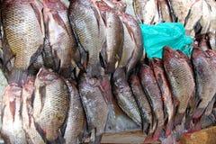 Fresh Tilapia Fish in the Market. Piles of fresh tilapia fish ready for sale in a public market in Kampala, Uganda stock photo