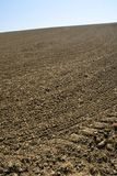 Fresh tilled field Stock Photo