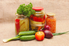 Fresh and tinned vegetables on a sacking. Still life Royalty Free Stock Image
