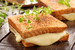 Fresh toast with cheese and herbs Royalty Free Stock Photos