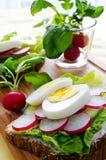 Fresh toast sandwiches with egg and radish Stock Image