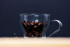 Fresh toasted coffee beans Stock Photography