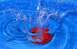 Fresh tomato. Tomato dropped into water stock images
