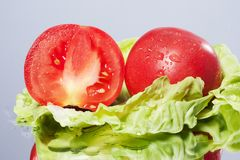 Fresh tomato Royalty Free Stock Photography