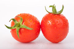 Fresh tomato. Tomatoes on a branch close-up on white background Royalty Free Stock Photos