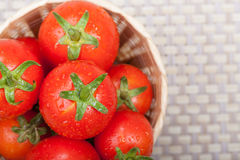 Fresh tomato. In a basket Royalty Free Stock Images