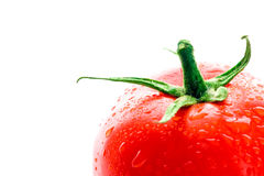 Fresh Tomato. Covered with water drops royalty free stock photo