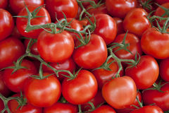 Fresh tomato background Stock Photo