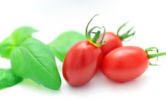 Fresh tomato and basil Royalty Free Stock Images