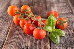 Fresh tomato and basil. On wood background Royalty Free Stock Image