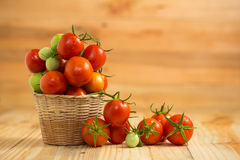 Fresh tomato in basket Stock Photography
