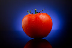 Fresh tomato on blue Stock Photography