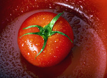 Fresh tomato in bowl Royalty Free Stock Photo