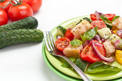 Fresh tomato and bread Panzanella salad Royalty Free Stock Photography