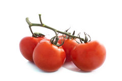 Fresh tomato Royalty Free Stock Image