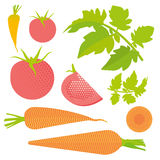 Fresh tomato and carrot set. Isolated and cut, leaves, flat illustration Royalty Free Stock Image