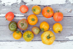 Fresh tomato. Fresh colorful organic tomato from the garden Stock Image